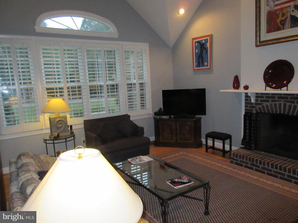 Family Room - 10731 HUNTERS PL, VIENNA