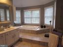 Master Bath - 10731 HUNTERS PL, VIENNA