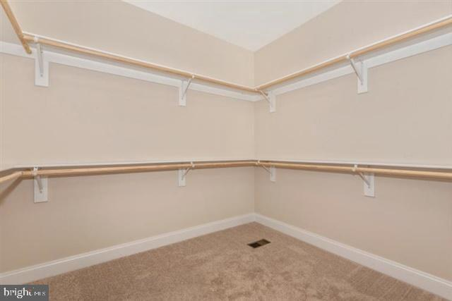 All closets with wood shelving - 251 KNOTTY ALDER CT, WOODSBORO