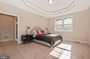 Owner's suite on 1st floor - 251 KNOTTY ALDER CT, WOODSBORO
