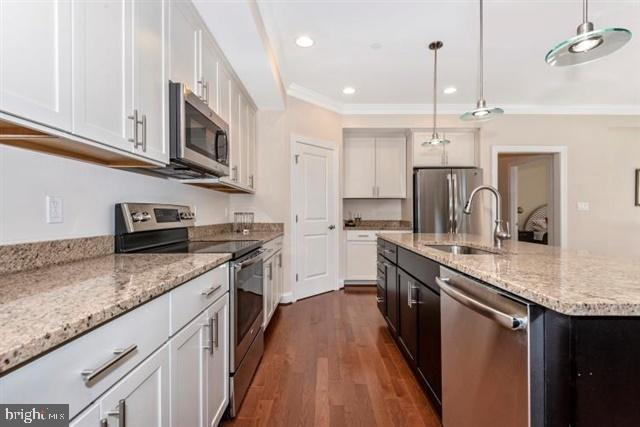 Kitchen with oversized food pantry - 251 KNOTTY ALDER CT, WOODSBORO