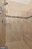 Owner's suite bath with handheld shower - 251 KNOTTY ALDER CT, WOODSBORO