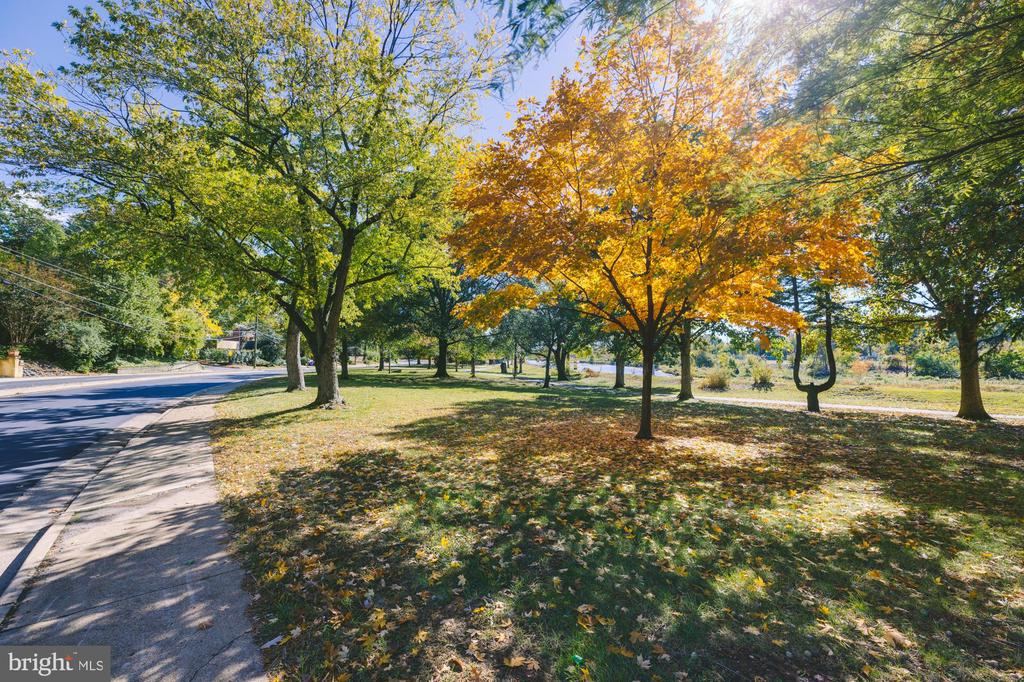Walking Path Along the River in Front of House - 3137 S GLEBE RD, ARLINGTON