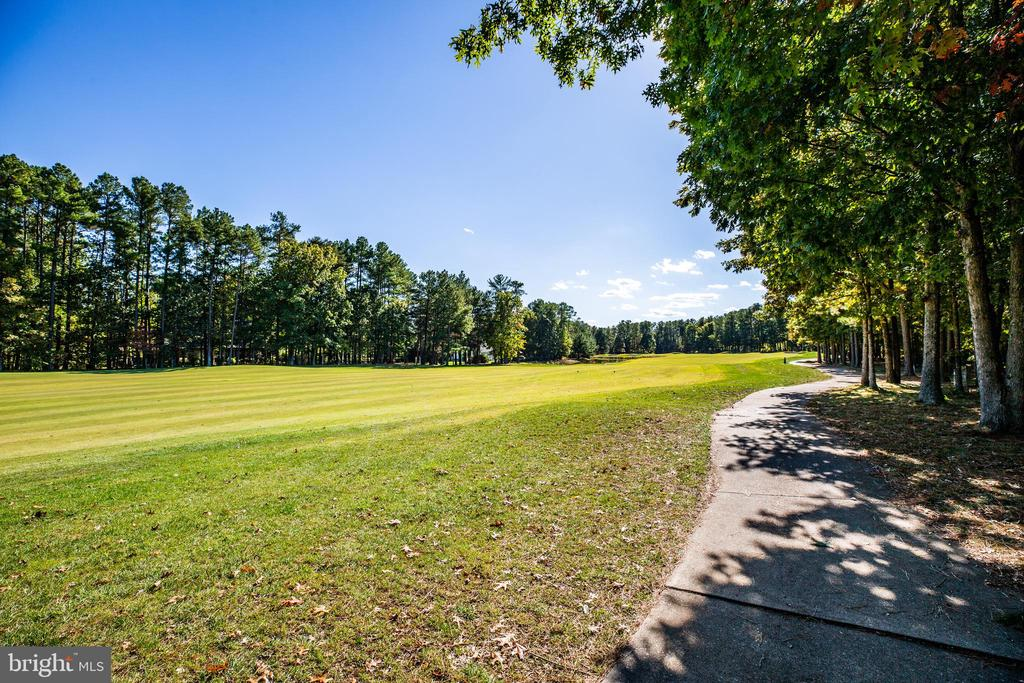 Amazing view of the golf course! - 11206 VALOR BRIDGE DR, SPOTSYLVANIA
