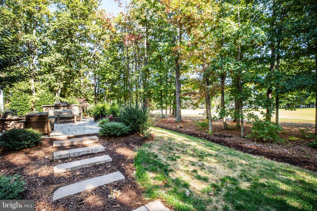 Beautiful landscaping - 11206 VALOR BRIDGE DR, SPOTSYLVANIA