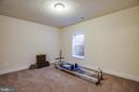 Lower-level bedroom - 11206 VALOR BRIDGE DR, SPOTSYLVANIA