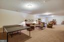 Rec room - 11206 VALOR BRIDGE DR, SPOTSYLVANIA
