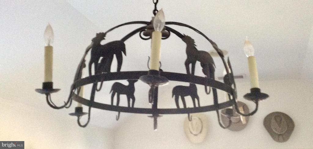 Wrought iron chandelier in mud/laundry entry. - 18217 CANBY RD, LEESBURG