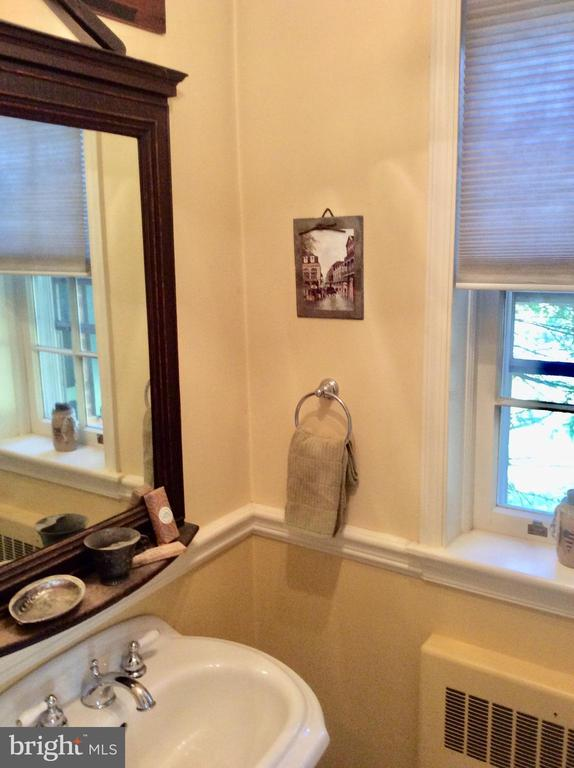 Hall powder room on main w/ window. - 18217 CANBY RD, LEESBURG