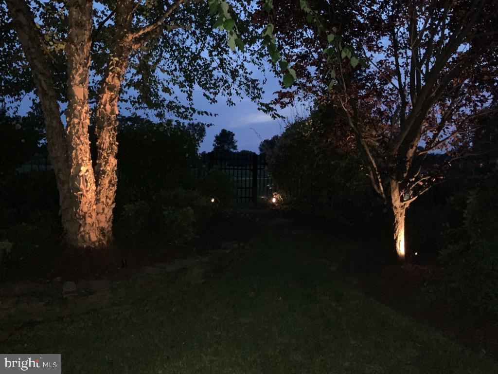 Nightlighting makes the backyard dramatic - 18375 FAIRWAY OAKS SQ, LEESBURG