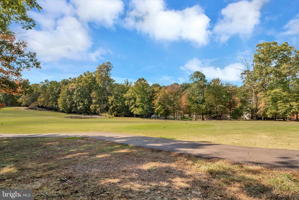 view from backyard to #1 golf pond - 143 EAGLE CT, LOCUST GROVE