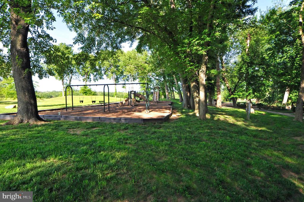 Playgrounds and Open Space for All to Enjoy. - 18229 CYPRESS POINT TER, LEESBURG