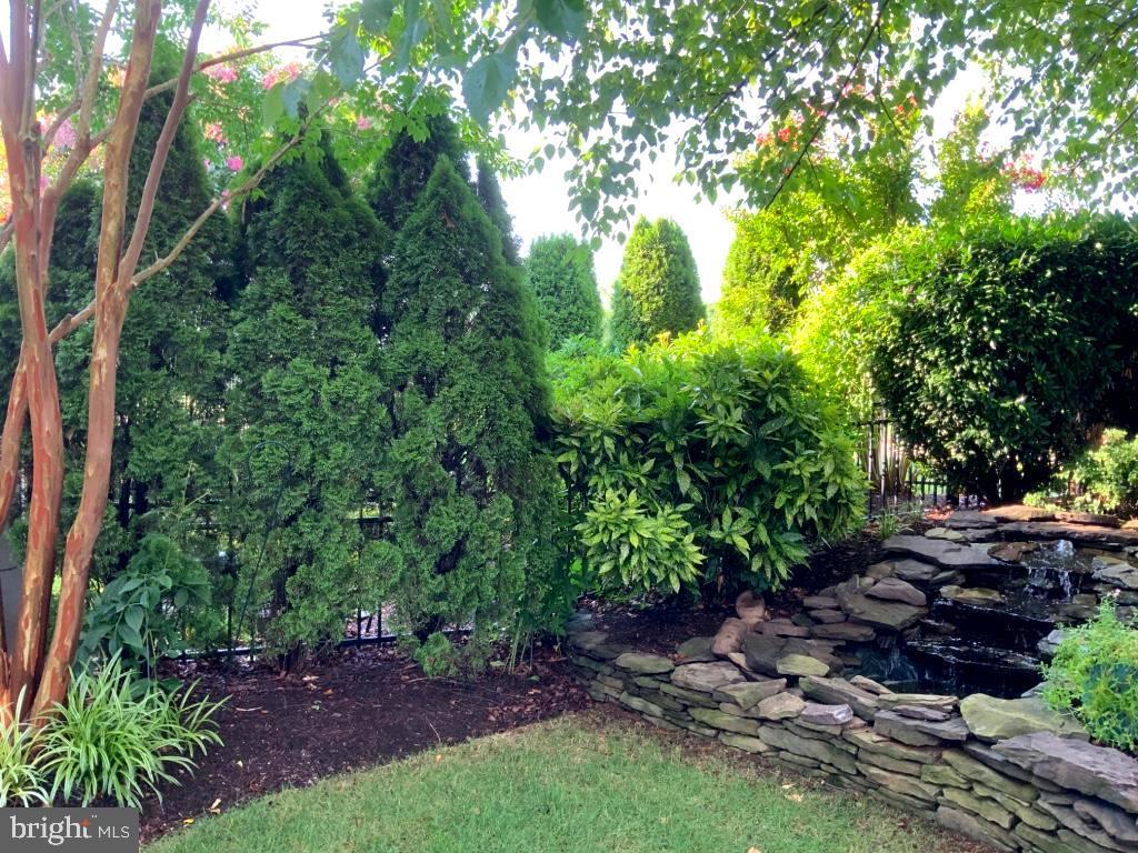Beautiful manicured landscaped back yard - 18375 FAIRWAY OAKS SQ, LEESBURG