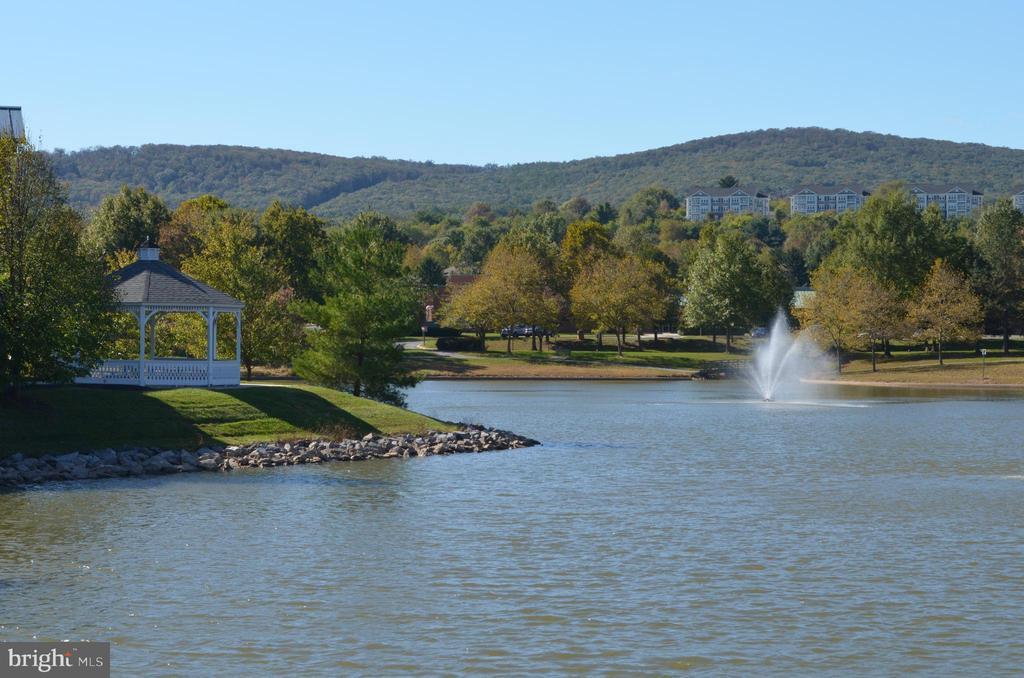 Enjoy the beautiful scenery! - 2498 LAKESIDE DR, FREDERICK