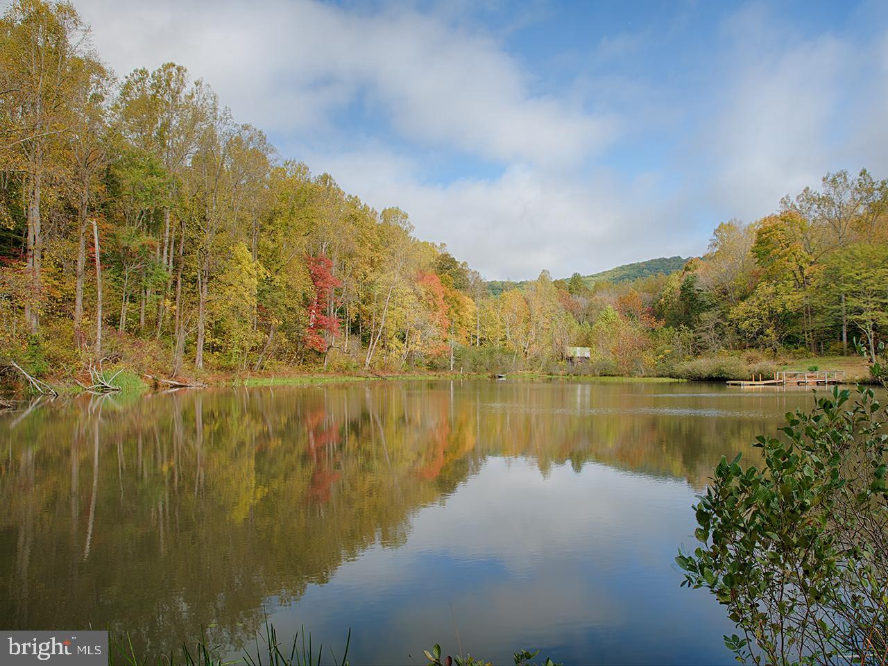 土地 のために 売買 アット Lovingston, バージニア 22949 アメリカ