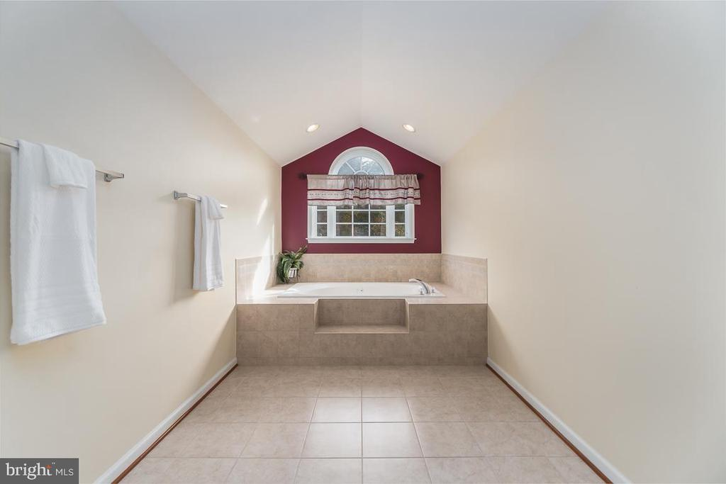Just look at this Master Tub Sanctuary - 131 ARDEN LN, STAFFORD