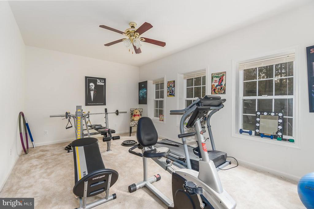 Home Gym/Flex Room with lots of windows - 131 ARDEN LN, STAFFORD