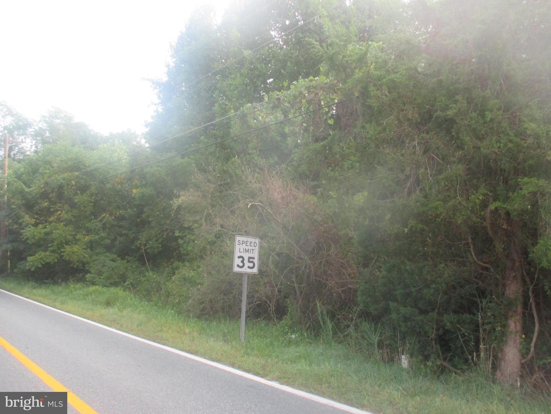 Additional photo for property listing at  Chesapeake City, Maryland 21915 United States