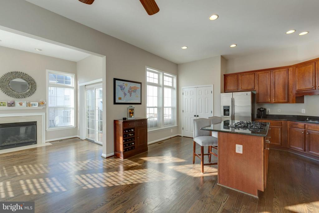 Great space for entertaining - 25153 SODALITE SQ, ALDIE