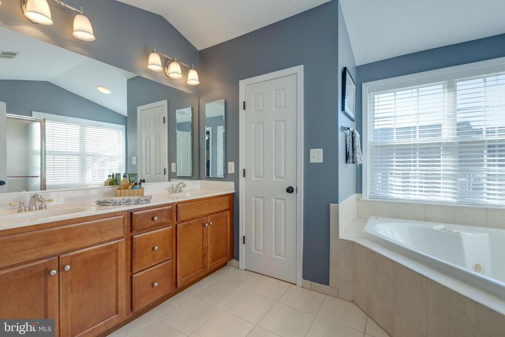 Master Bath with dual vanity, soaking tub - 25153 SODALITE SQ, ALDIE