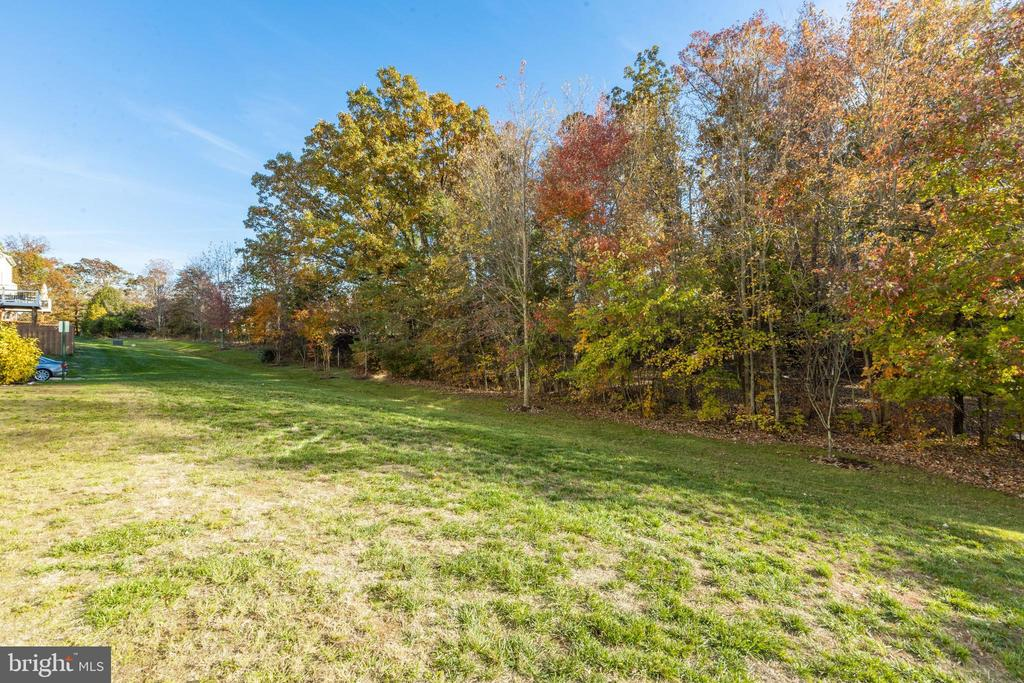 Privacy and side yard all your own - 25153 SODALITE SQ, ALDIE