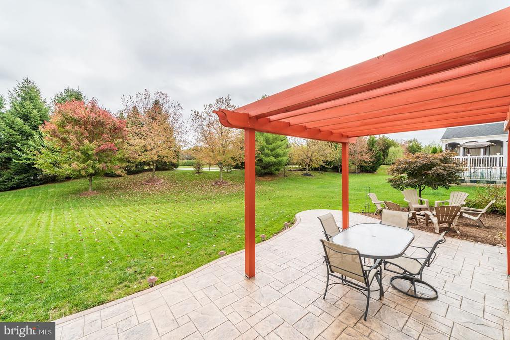 Back Patio - 21824 AINSLEY CT, BROADLANDS