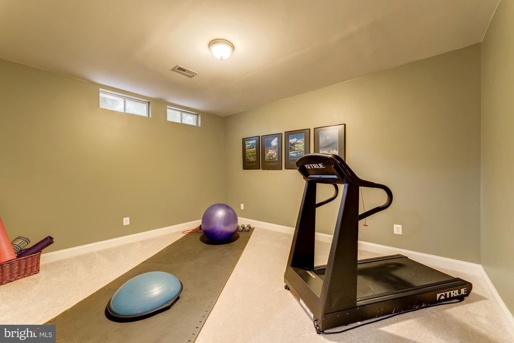 Fitness Room - 21824 AINSLEY CT, BROADLANDS