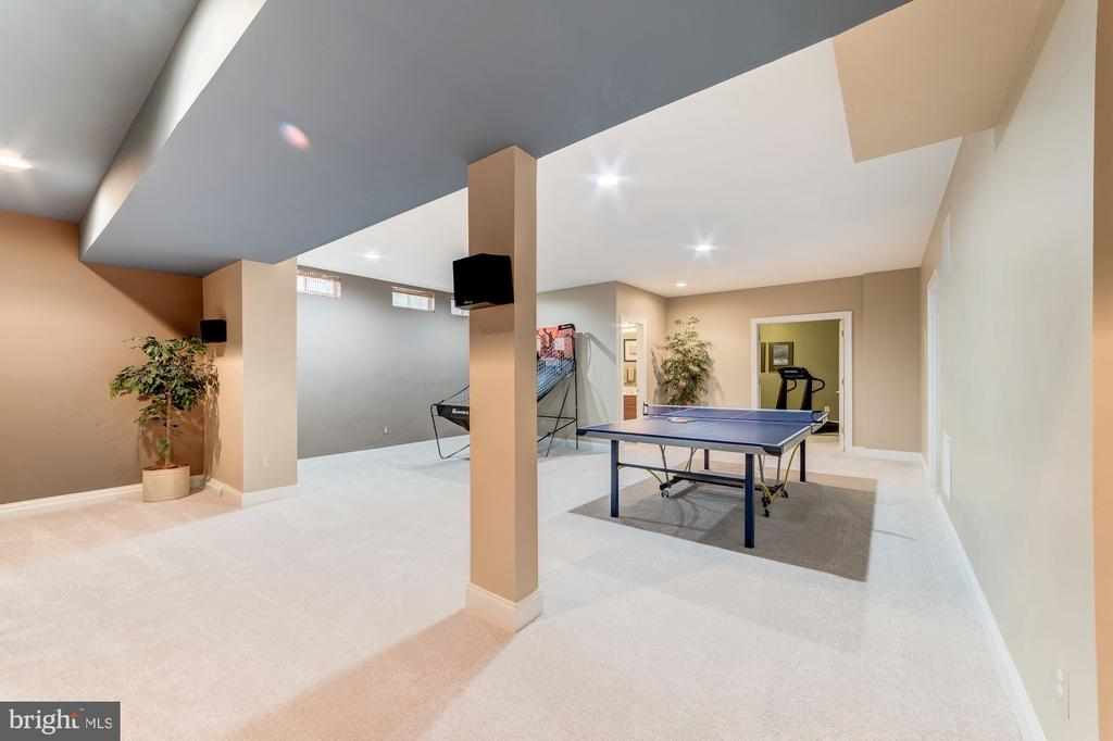Lower Level Game Room - 21824 AINSLEY CT, BROADLANDS