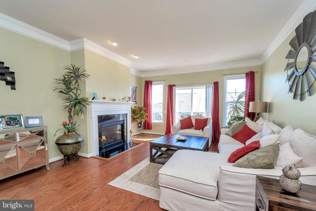 Living Room with Gas Fireplace - 180 LONG POINT DR, FREDERICKSBURG