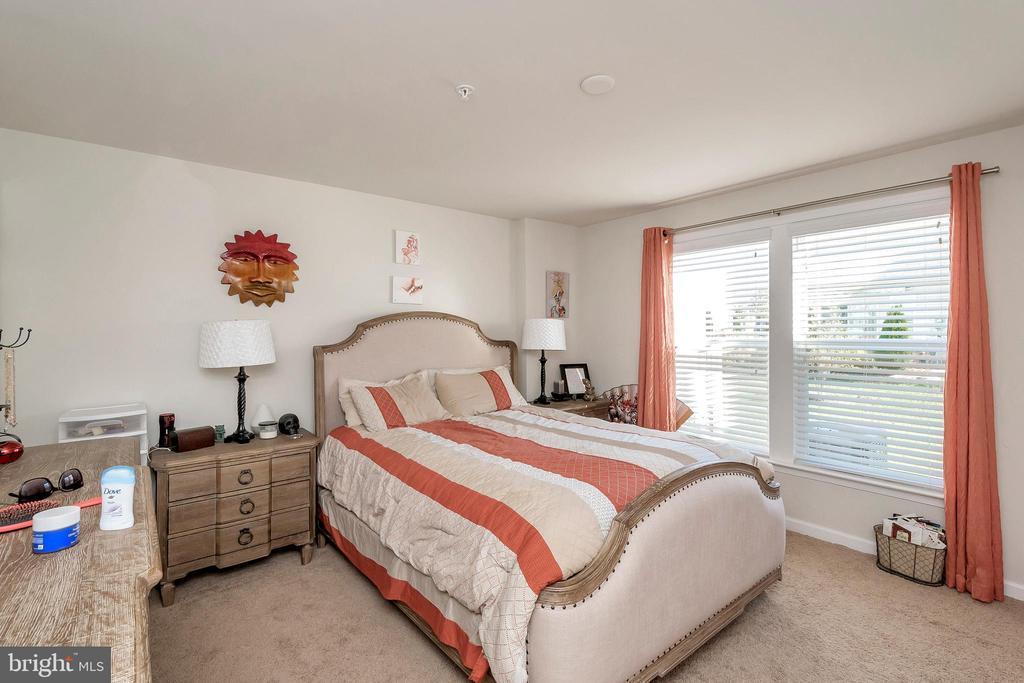 Bedroom Lower Level - 180 LONG POINT DR, FREDERICKSBURG