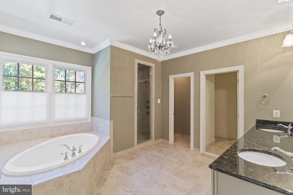 Master Bath with steam shower and soaking tub - 15093 LAUREL HILL CT, LEESBURG