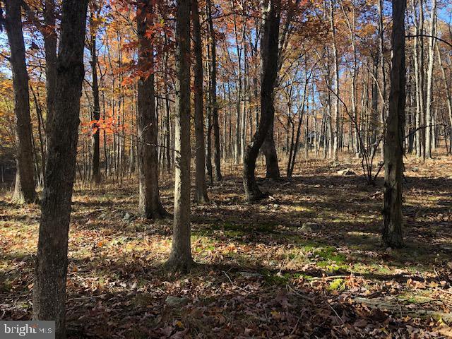 Terreno para Venda às New Creek, West Virginia 26743 Estados Unidos
