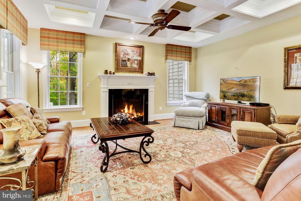 Generous Family Room And Fireplace - 4830 CASTLEBRIDGE RD, ELLICOTT CITY
