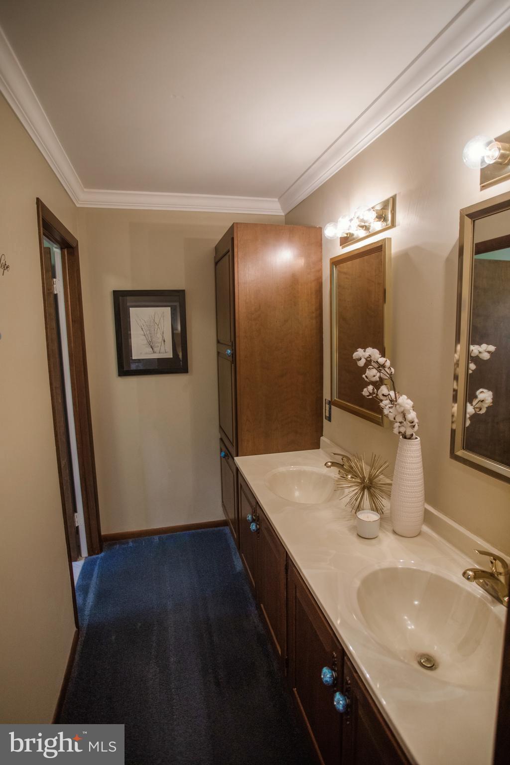 Master Bath Vanity area
