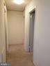 Hallway - 6100 WESTCHESTER PARK DR #1116, COLLEGE PARK