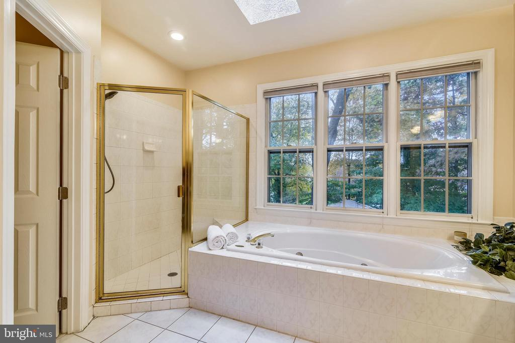 Jacuzzi tub & separate shower - 10680 ALLIWELLS CT, OAKTON