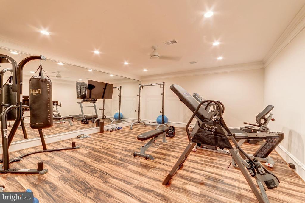Fitness Room - 10469 SPRINGVALE MEADOW LN, GREAT FALLS