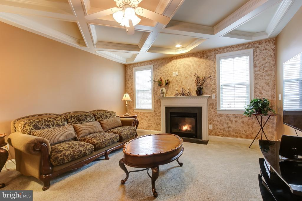 FAMILY ROOM W/COFFERED CEILING & FIREPLACE - 15346 WITS END DR, WOODBRIDGE