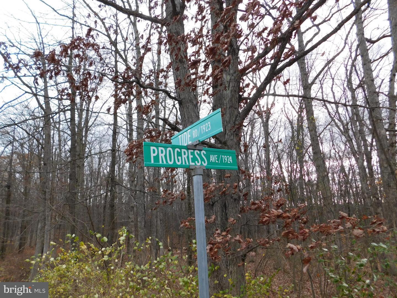 土地,用地 为 销售 在 Tamaqua, 宾夕法尼亚州 18252 美国