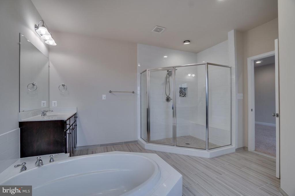 Big shower stall - 42560 DREAMWEAVER DR, BRAMBLETON