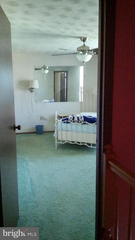 Mater bedroom - 260 WHITE HALL RD, WINCHESTER
