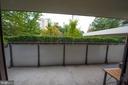 enormous balcony - 5300 COLUMBIA PIKE #111, ARLINGTON