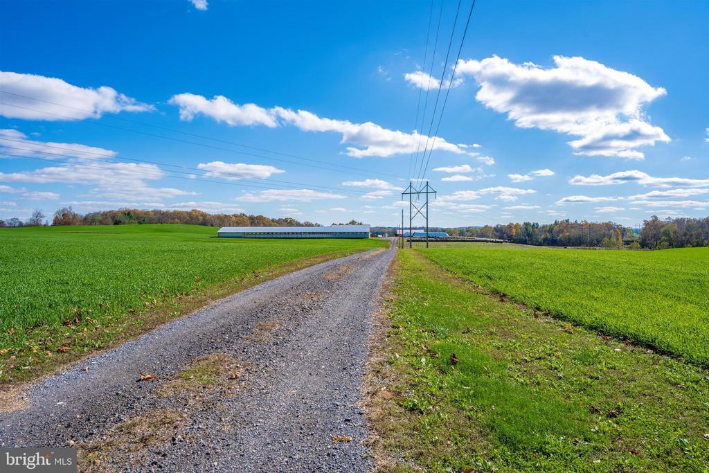 Driveway - 10140-A LENHART RD, FREDERICK