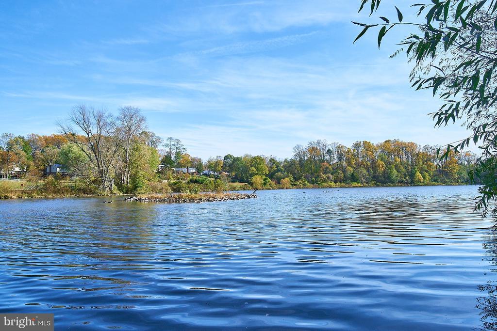 Property backs to and has views of Lake Royal - 5366 GAINSBOROUGH DR, FAIRFAX