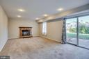 Rec Room w/ Walk Out to Back Yard - 4335 SILAS HUTCHINSON DR, CHANTILLY