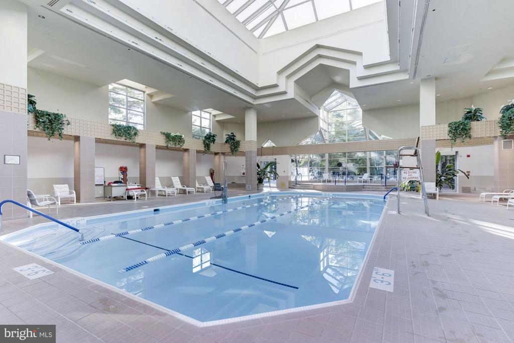 Indoor pool - 5600 WISCONSIN AVE #202, CHEVY CHASE