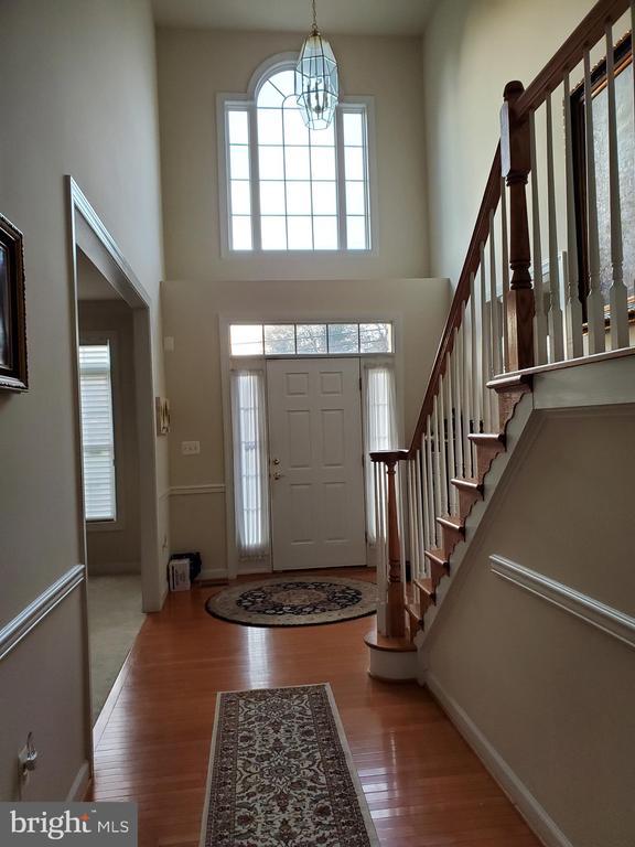 Foyer / Hallway - 4423 CARRICO DR, ANNANDALE
