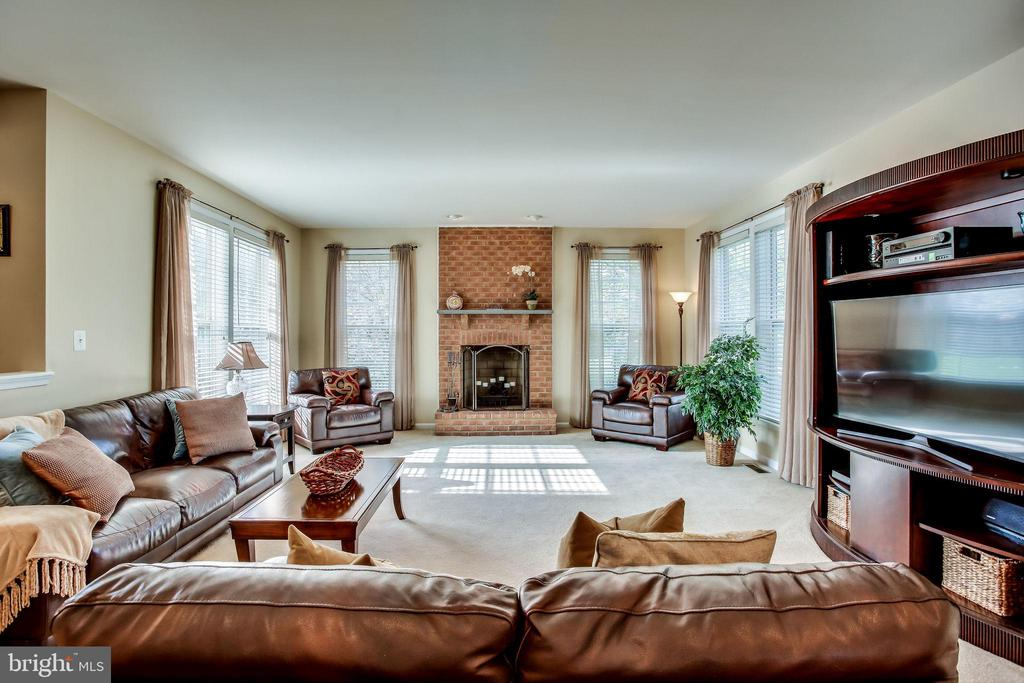Family room - 42926 CLOVERLEAF CT, BROADLANDS