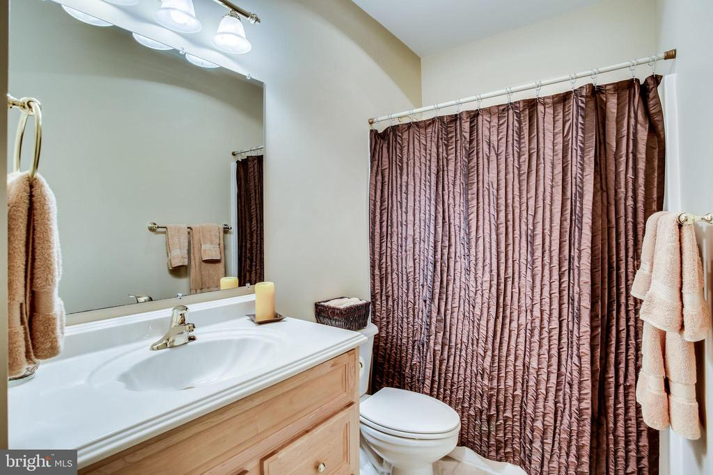 Lower level full bath - 42926 CLOVERLEAF CT, BROADLANDS