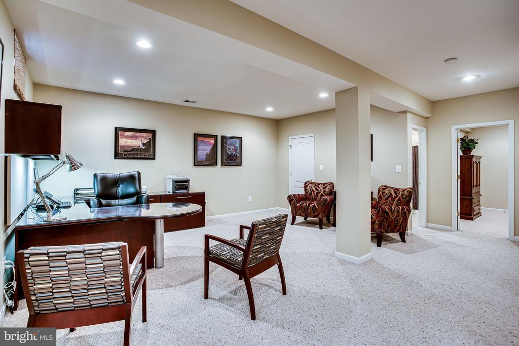 Finished lower level - 42926 CLOVERLEAF CT, BROADLANDS